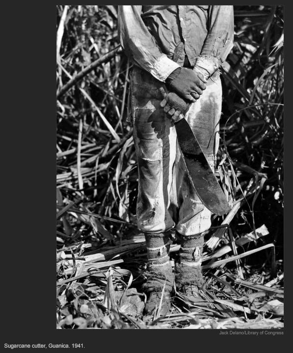 Suggarcane cutter, Guanica. 1941, Jack Delano