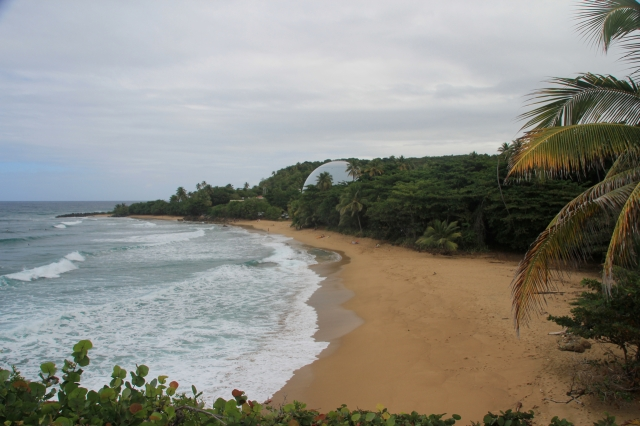 Puerto-Rico-8069